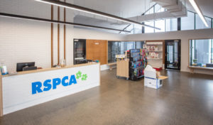 Livewired-Electrical-RSPCA-Wellcamp
